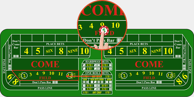 Craps Field Bet