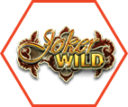 Jokers Wild Video Poker Icon