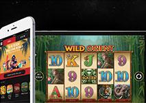 Guts Casino Software