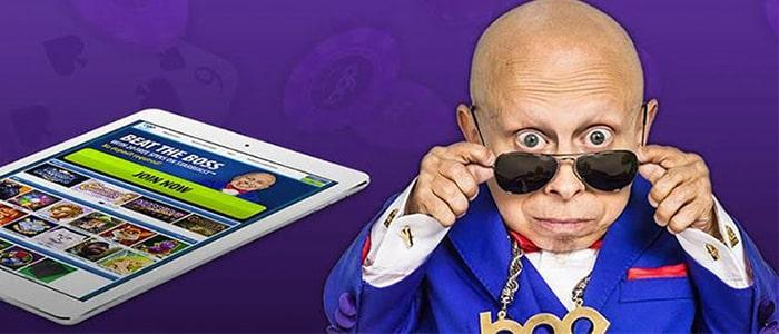 BGO Casino App Intro