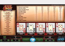 Video Poker Jokers Wild Screenshot