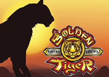 Golden Tiger Casino Software