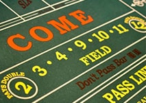 Field Bet in Craps