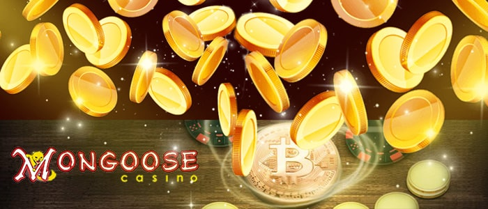 Mongoose Casino App Banking