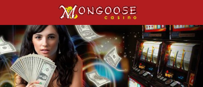 Mongoose Casino App Intro
