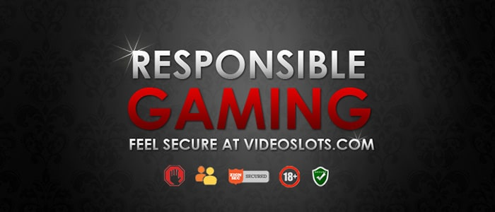 Videoslots Casino App Safety