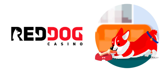 Red Dog Casino App Safety
