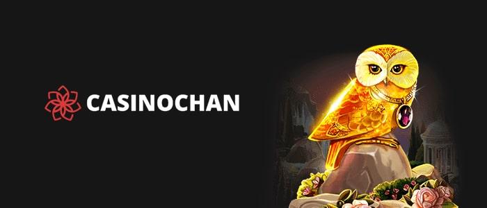 CasinoChan App Cover